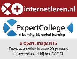 internetleren_expertcollege_banner_200x260_NVDA